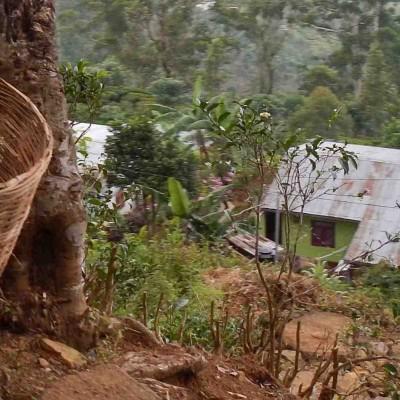 THEEJOURNAAL – SRI LANKA 2013
