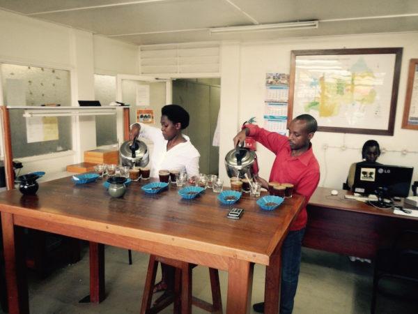 Evermore Coffee Cupping in Rwanda