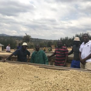 Tanzania Lyela | Evermore
