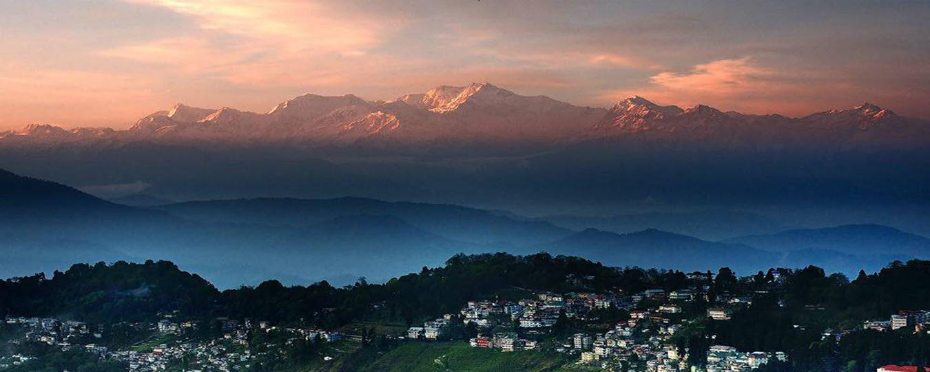 Ondanks onrust in Darjeeling dit jaar toch een 'First Flush', en wat voor een!