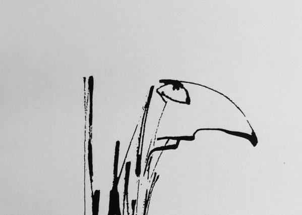 Inkttekening door Raph de Haas | Evermore