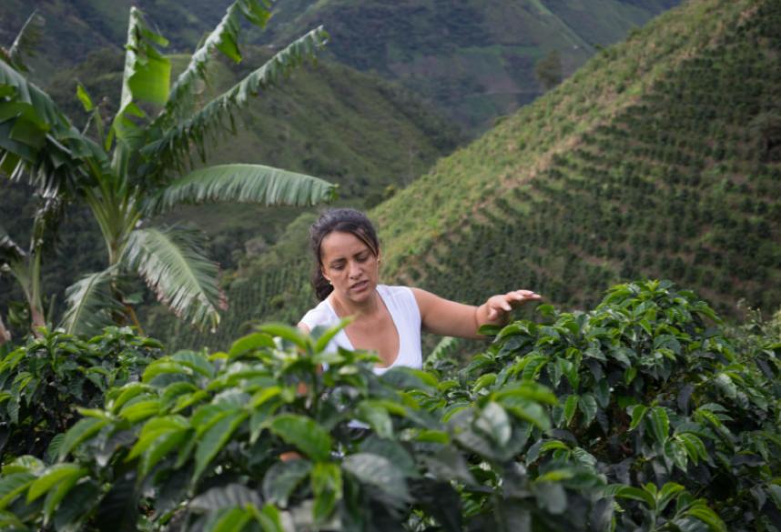 Colombia Astrid Medina | Evermore