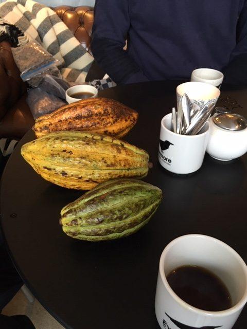 Kuná Cacaobonen | Evermore