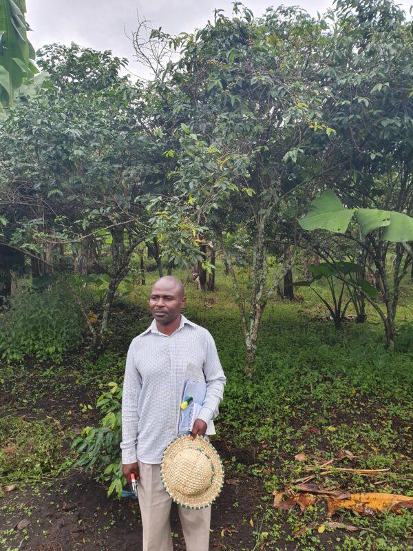 Uganda Ekimuli Coffee | Evermore